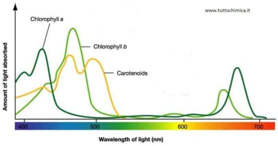 Astronomia: spettroscopia nell'ultravioletto 3